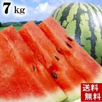 【送料無料 北海道すいか 夏の旬フルーツ】 昔ながらの縞皮西瓜です。ブランド西瓜で有名な「でんすけす...