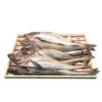 名称 生スケトウダラ  内容量 約3kg(30〜35cm、10〜15匹)  賞味期限 別途記載  保...