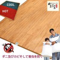 製品名 オンドル床(フローリング調電気カーペット)大サイズ   サイズ 220cmX180cmX1c...