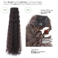 フラダンス用ウイッグ 【防静電気繊維】WG01