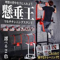 懸垂王 マルチ チンニングスタンド 懸垂マシン 筋肉 トレーニング KZ-KENSUIOH 即納