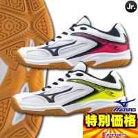 未来のに日本を背負う君たちに「ジュニアモデルだZ!」  ●ジュニア用バレーボールシューズ ●ライトニ...