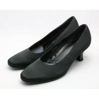 この靴をお買い上げのお客様に コロニル ゴアテックス対応防水スプレー 税込み1080円の品と ミズノ...