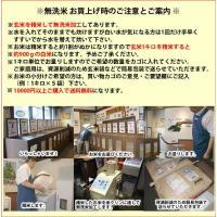 令和2年産新米・ひとめぼれ【玄米5kgを精米・無洗米加工】|katayama-kometen|03