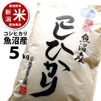 ■商品名■  新潟 魚沼産コシヒカリ 5kg 精米したての美味しさをご自宅に。 美味しさそのまま!窒...