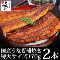 特大 国産 うなぎ 蒲焼き 170g×2本セット(鰻 ウナギ)