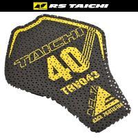 ■メーカー:RS TAICHI/アールエスタイチ ■商品名:CE デルタメッシュ バックプロテクター...