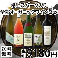 ワインセット 格上スパーク入り 京橋ワイン厳選 全部オーガニックワイン5本セット wine|kbwine