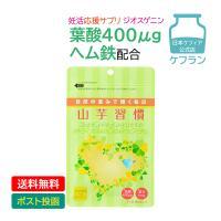 妊活 応援サプリ 葉酸 DHEAみたいな ジオスゲニン 乳酸菌 山芋習慣 124錠 約1ヵ月分 妊娠前にオススメ サプリメント ヘム鉄