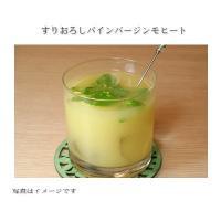 デルモンテ おろしパイナップル 500g / UD 区分3|kenko-departs|03