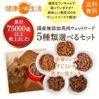 ドッグフード ウェットフード 無添加 5種類の馬肉選べるお試しセット 400g(5袋)犬用 ごはん 手作りごはん 送料無料 手作り 公式 健康いぬ生活お試し