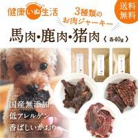犬 アレルギー おやつ ジャーキー 無添加 ヘルシージャーキー3種(馬肉・鹿肉・猪肉) (40g×3袋) お試し 国産 公式 健康いぬ生活 送料無料