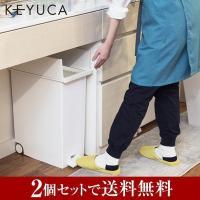 ごみ箱 キッチン 分別 ペダル ふた付き 蓋|arrots ダストボックスII ゴミ箱 L 27L ホワイト 2個セット KEYUCA ケユカ