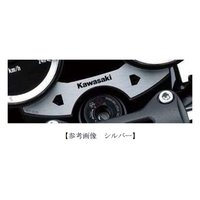 【メーカー】 カワサキ  【適合車種】 Z900RS(18年-)  【特徴】 車種専用インジケーター...