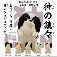 狆の鎮々 JAPANESE Chin 全5種セット (ガチャ ガシャ コンプリート)