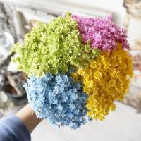 アロマワックスサシェやキャンドル制作にお使いいただけます。 ■花サイズ:約0.5〜1.0cm ■重さ...