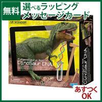 4M社 クラフト・工作キット ARティラノサウルス です。 発掘&組立シリーズに、バーチャル...