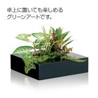 2WAY グリーンアート Sサイズ(観葉植物/フェイク/壁掛け/花インテリア)