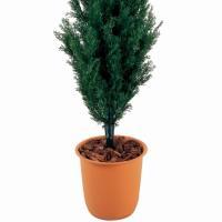 人工観葉植物 ブルーポイント95cm 高さ95cm  dt3105