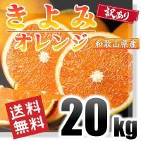 ■商品説明  和歌山県産 訳あり)きよみオレンジ 小玉 20kgで送料無料の商品になります。  ※こ...