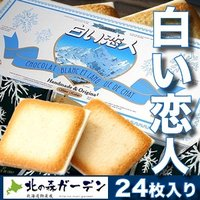 白い恋人24枚入 ホワイトチョコレートとラングドシャーのハーモニー(dk-2 dk-3)