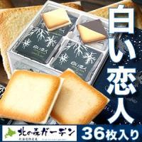 石屋製菓 白い恋人 36枚入 ホワイトチョコレートとラングドシャーのハーモニー(dk-2 dk-3)