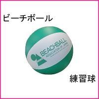 ビーチボール 冬用練習球