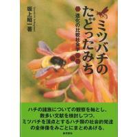 ★この商品は【バーゲンブック】です。★  商品名:  ミツバチのたどったみち 新装版 商品基本情報:...