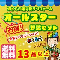 【送料無料(配送会社選択不可)】畑からの贈り物きづファームオールスター福袋野菜セット 13品以上!
