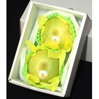 辛口マツコも大絶賛!【月曜から夜ふかし】登場 二十一世紀梨は青梨の二十世紀梨と赤梨、洋ナシを自然交配...