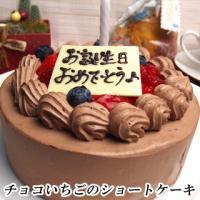 日曜、祝日は出荷のお休みを頂いております 誕生日ケーキ バースデーケーキ 商品説明 チョコ&いちごシ...
