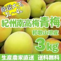 日本有数の梅の産地、和歌山県みなべ町で収穫された南高梅青梅を、大玉サイズのみ厳選してお届けします! ...