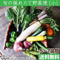 奈良県、和歌山県の生産者が作物への想いを込めて作った伝統野菜や個性あふれる野菜、山菜の詰め合わせ。 ...