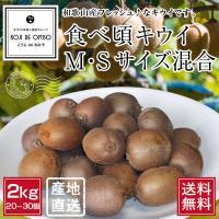 和歌山より産地直送! 食べ頃キウイフルーツ M・Sサイズ混合 2kg [送料無料]