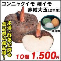手作りコンニャクに挑戦! 商品情報 コンニャクの名産地・群馬県で作られた優秀品種。在来種に比べて肥大...