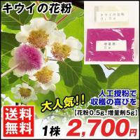 果樹苗 キウイの花粉 1袋