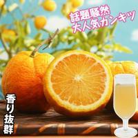 香り豊か 商品情報 ビタミン・ミネラルを含み、味はまろやかで美味しい。ユズのように、ジュース・お酒・...