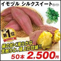 さつまいも イモヅル (芋づる) シルクスイート (R)PVPイモヅル 50本(登録品種名HE306) / さつまいも苗 サツマイモ苗 薩摩芋