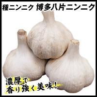 ニンニク種球 博多八片ニンニク種球 1kg / 国華園