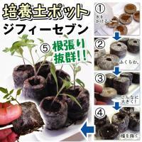 商品情報 吸水させるだけで培養土ポットになるから草花・野菜の育苗、さし目に最適。そのまま植えられるか...