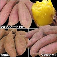 商品情報 お届け状態  イモヅル 備考 シルクスイート:粘質 安納芋:粘質 べにはるか:粉質