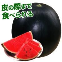 種 野菜たね スイカ F1黒兵衛 1袋(3ml) / 野菜の種 すいか 西瓜 黒皮 国華園