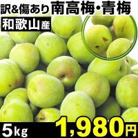 商品情報 全国の梅生産量の6割以上を占める、日本一の生産地、和歌山県。特に、和歌山県発祥の「南高梅」...