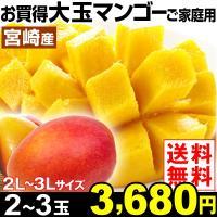 商品情報 濃厚な甘みの中に芳醇な香りがギュッと詰まった、熱帯果実の王様マンゴー。ブランドマンゴーで有...
