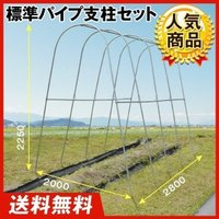 トマトの雨よけ栽培をはじめ、つる性植物の支柱としても! 商品情報 亜鉛メッキスチール製のサビない支柱...