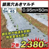 サイズ豊富!植え付け用穴付きで便利! 商品情報 サイズ(約) 幅:0.95m、長さ:50m、株間:1...