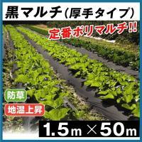 厚みがあって丈夫! 地温を上げ、雑草を抑制! 商品情報 ●厚さ0.03ミリと厚みがあり、丈夫! ●日...