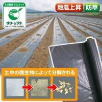 地球にやさしく片付けの手間を軽減! 商品情報 ●強度・柔軟性があり、機械展張可能! ●土中の微生物に...