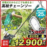 商品情報: 充電式だからどこにでも持ち運べて、高木も低木ザクザク刈込できる! ●背の高い生垣も平らに...