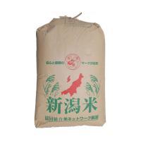 平成30年産 一等米 新潟県産コシヒカリ玄米 30kg